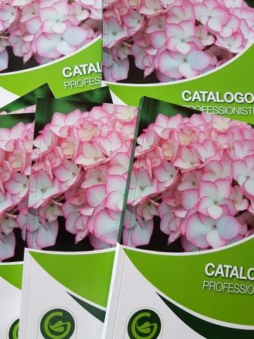 foto-cataloghi-small.jpg